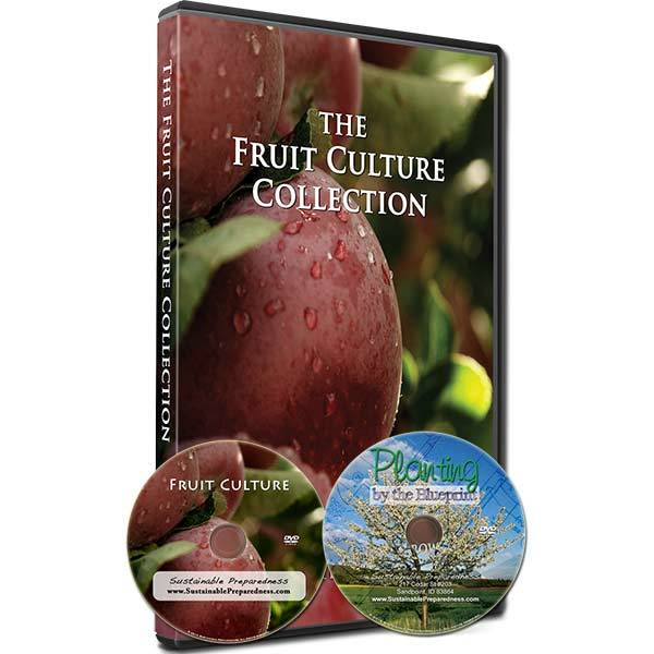 Fruit Culture Collection
