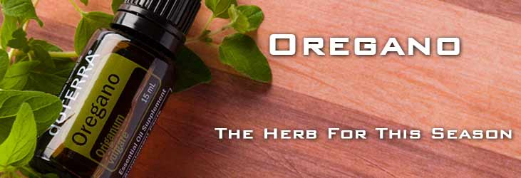Oregano Oil For This Season