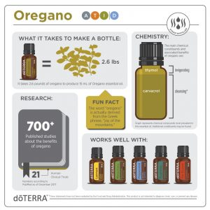 Oregano Infographic